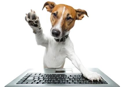 bigstock-dog-computer-33513887-e1434720373539