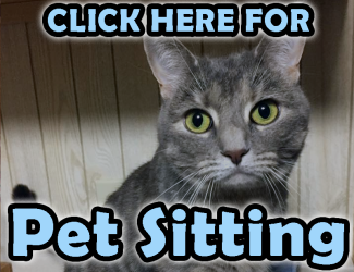 pet sitting clickable